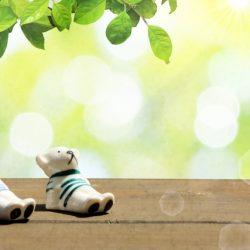 想擺脫「冬季憂鬱」!請做2件事:一曬太陽、二翻《青鳥》去發現已然擁有的幸福..《靜心 淨心》