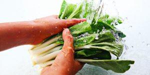 你還在用[洗米水,鹽水]洗蔬果嗎?避免農藥殘留,化工博士這樣做..