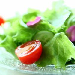楊定一博士的預防醫學精華 : 能量源自陽光 , 活食物最具療癒力