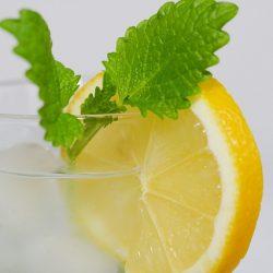 網路爆紅喝檸檬水6大好處?專家告訴你有沒有這麼神奇?檸檬水怎樣喝最健康?